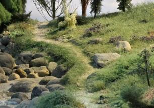 Herbes folles et paysage sauvage N, HO, O